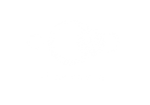 Client Circle Agency –Website Design and UX
